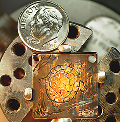 TurtleTieChainEmblemCompletedwithPatina_dime_1000px.jpg