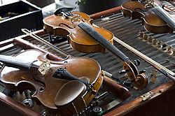 Violins-jpg.jpg
