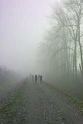 JHW-jogging-running-fog-mist-1_016.JPG