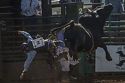 rodeo_DSC_0254_1_of_1_.jpg