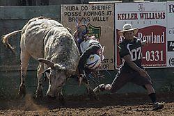 rodeo_DSC_0290_1_of_1_.jpg