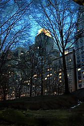 Nightime_in_Central_Park_edited-1.jpg