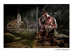 celtic_vengeance1.jpg