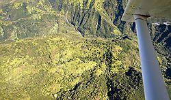 Airborne-Jurassic_Fall_s-TIFF_.jpg