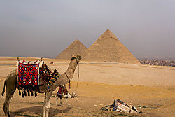 Camel_pyramid.jpg