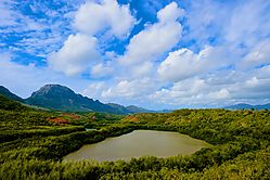 Hule_ia_River_Kauai-Best_Edit-jpg_.jpg