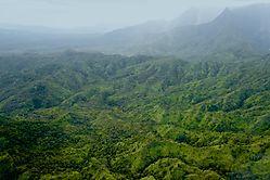 Misty_Paradise_Kauai.jpg
