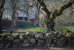 Napa-Barn_2019-01-03.jpg