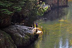 PSE_2012_0903_Vancouver_Forrest_Fishing_8_.jpg