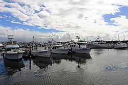 San_Diego_Harbor_1_DxO_copy.jpg