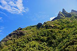 Twin-Peak_s.jpg