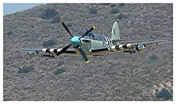 HWK8209firefly.jpg