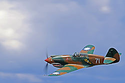 P-40-22.jpg