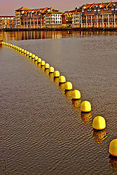 DSC_7855_Row_of_Yellow_Buoys.jpg