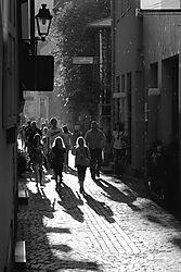 shadwalk2_DSC_19671.jpg
