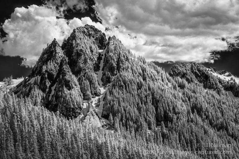 In_the_Cascade_Range_-1_Jun_30_2013