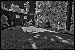 DSC5415-HDR.jpg