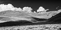 Lamar_Valley_in_YNP-2_Jul_04_2013.jpg