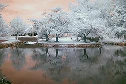 infrared_096_copy.jpg