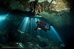CIH_Cenotes_2010_1.jpg