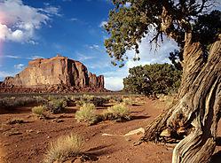 Arizona-43.jpg