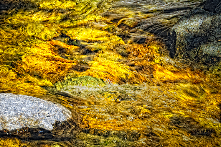 DSC3050_Salmon_Creek_Runoff_WEB