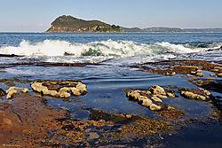 Lion_Island_from_Pearl_Beach.jpg