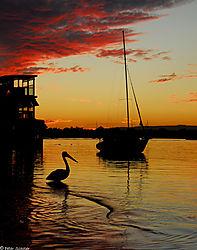 Noosa_River_Noosaville_sunset.jpg