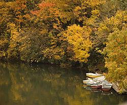 Colin_Stewart-Autumn_Lake.jpg