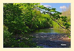 Farmington-River-Summer.jpg