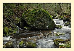 Mountain-Brook3.jpg