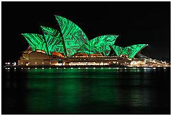 Vivid-Sydney_G.jpg