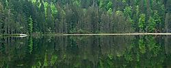 arber_see_01_klein.jpg