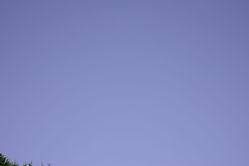 sky800.jpg