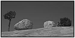 YosemiteZenCropped.jpg