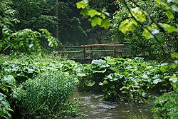 JP_Bridge.jpg