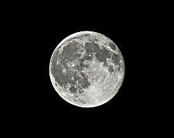 Blue_Moon_copy.jpg