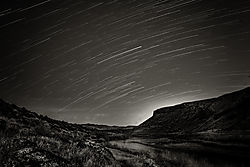 Celebration_Park_Star_Trails_BandW_Web.jpg