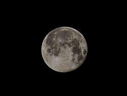moon241.JPG