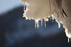 Winter_22_.JPG