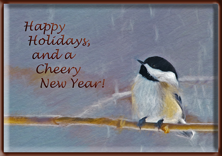 chickadee_snow4_card_framed_DSC0834