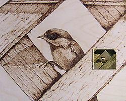 ChestnutBackedChickadee_pyrographyandphoto.jpg