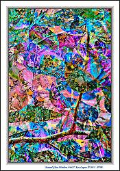 Stained_Glass_Window_6427.jpg