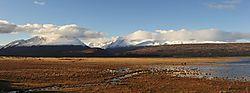 Landscaspe_-_South_Island_NZ.jpg