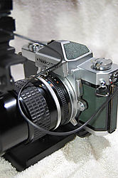 Nikon_FTN_Green_065.JPG