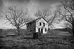 Old-House-9.jpg