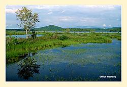 Long-Lake1.jpg