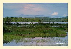 Long-Lake2.jpg