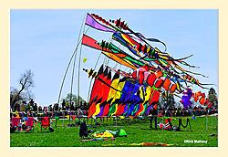 Smithsonian-KiteFlying-Day2.jpg