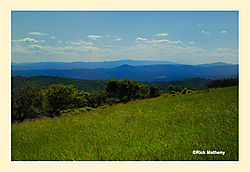 View-from-Iron-Mountain1.jpg
